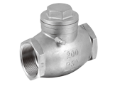 BSP Swing Check Valve